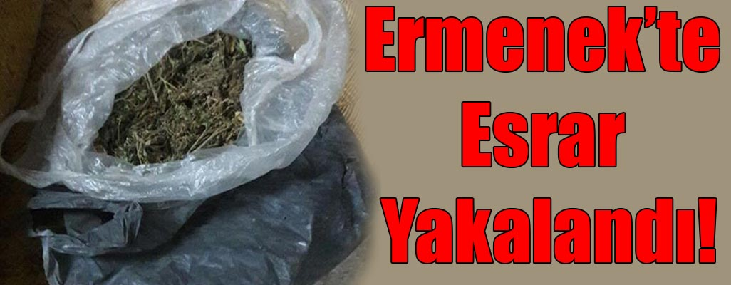 Ermenek'te Esrar Yakalandı!